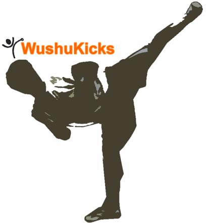 wushukicks kicks