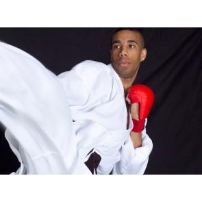 Adidas Karate Master Gi