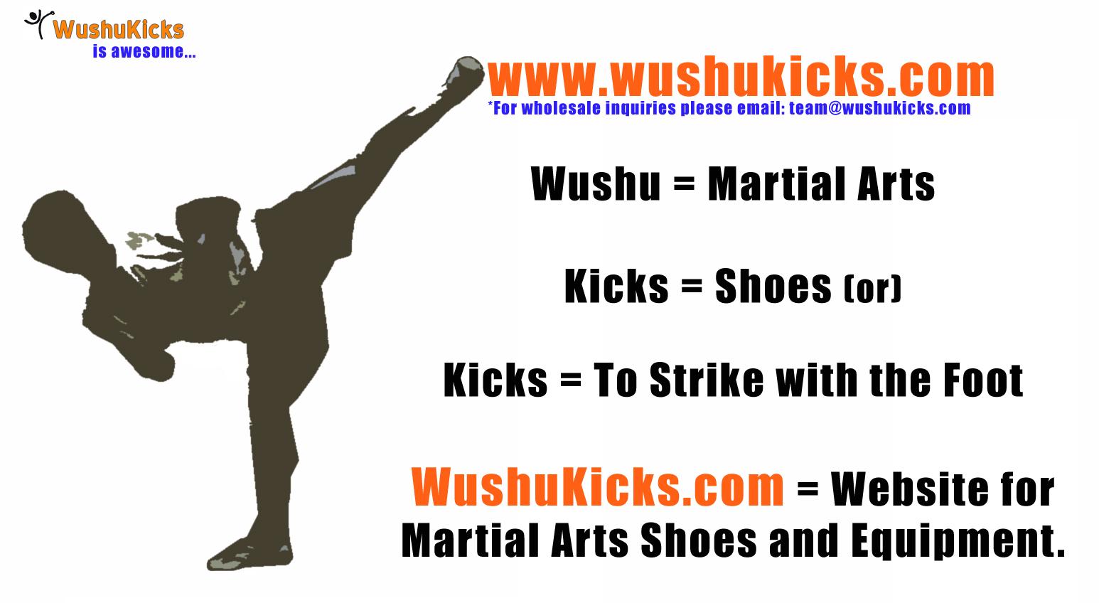 WushuKicks Ad